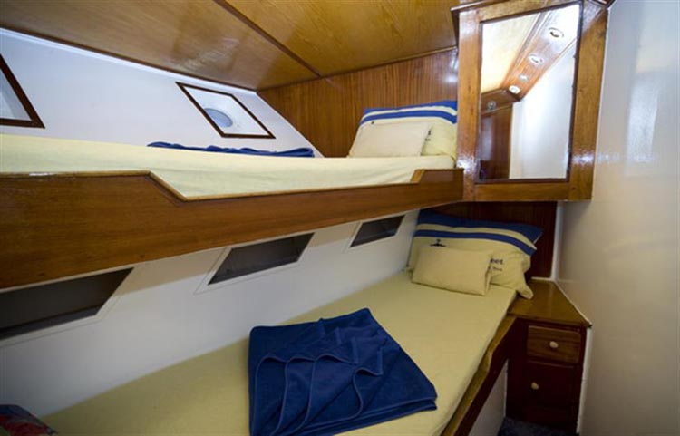 King Snefro V Twin Cabin
