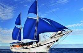 Fiji Liveaboard Diving Trips