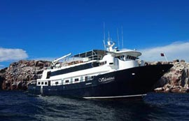 Liveaboard Diving Mexico Socorro Guadalupe